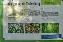 plakaat-thaborberg
